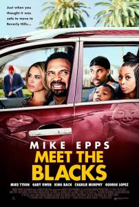 Meet the Blacks (2015)