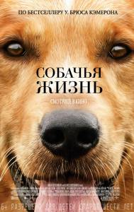 Собачья жизнь 2017