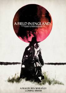 Поле в Англии 2013